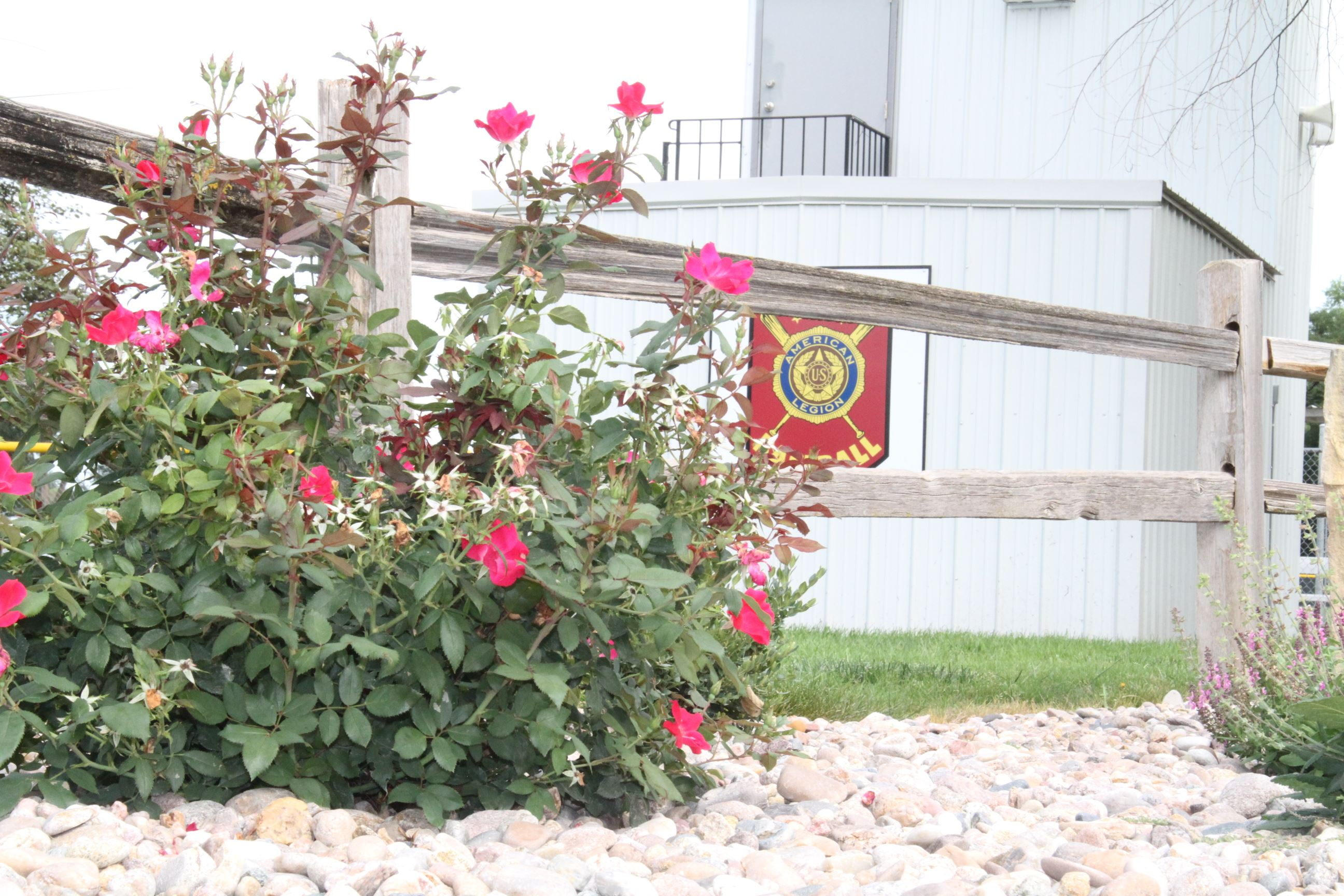 Flowers and Wooden Fence at Hebron Sports Complex