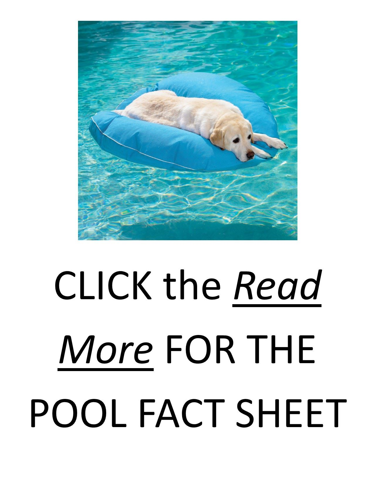POOL POSTER for WEBSITE