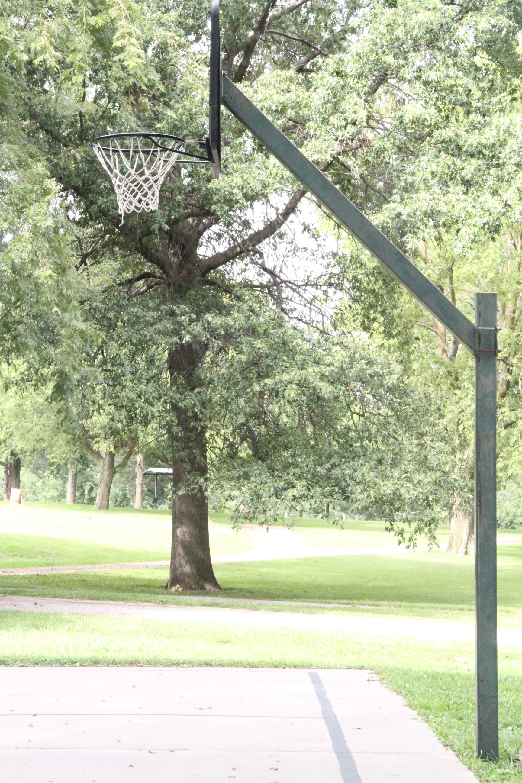 Basketball Hoop in Willard Park